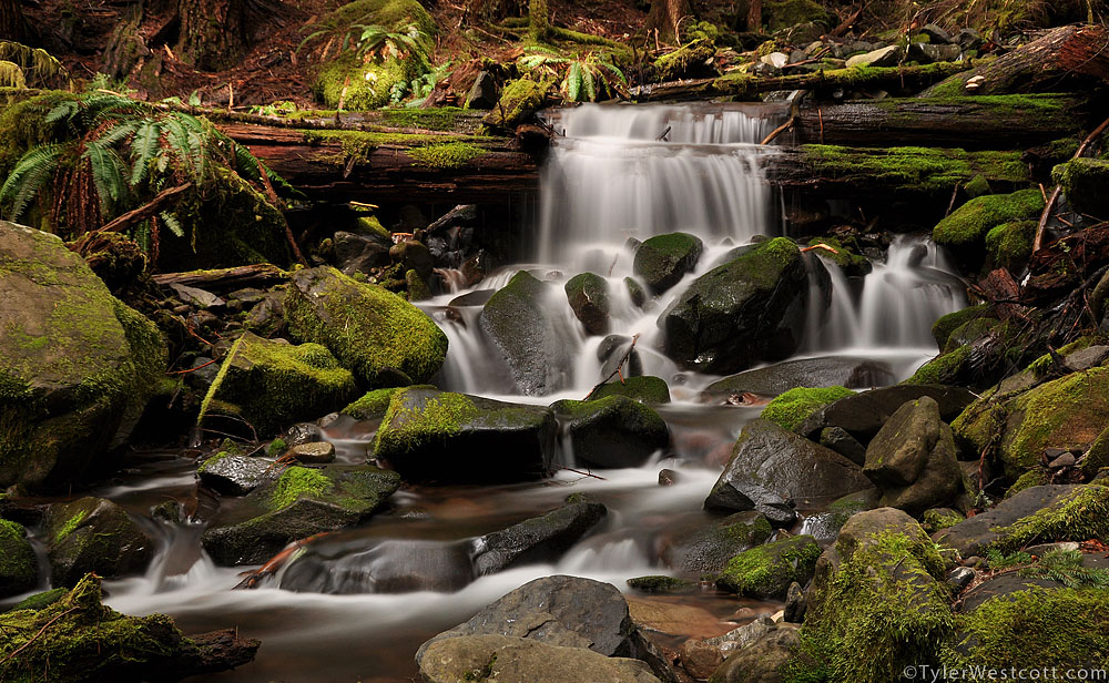 Sol Duc Mountain Stream, Olympic National Park, Washington