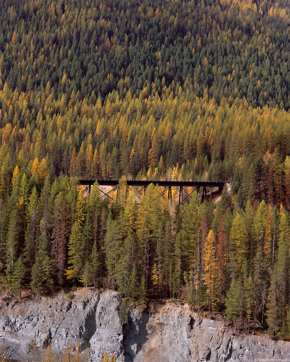 Bridge, Snowshed Mountain, Glacier National Park