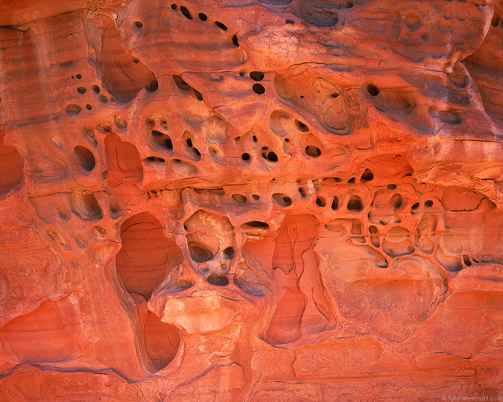 Erosion Detail, Valley of Fire State Park